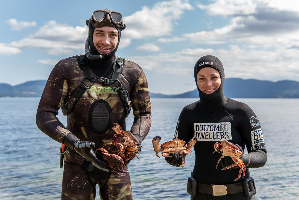 AUG 2/3 - Liquid Flora and Fauna: Hand Harvesting and Snorkelling