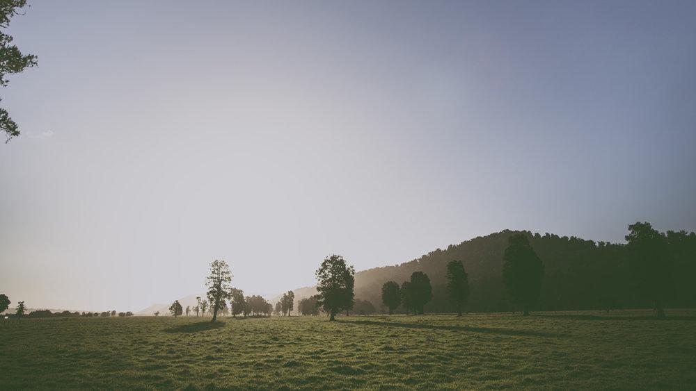 New Zealand Roadtrip_2014_0535