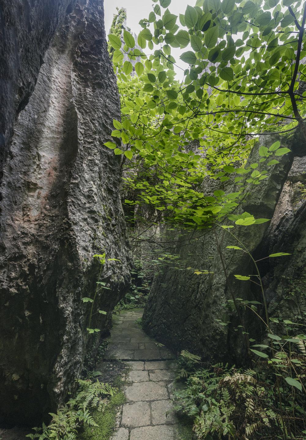 kunming20.jpg