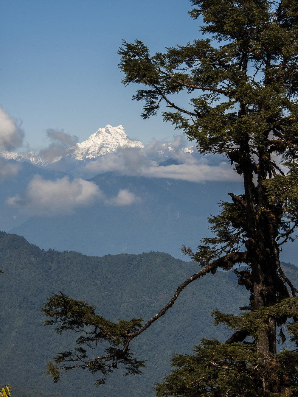 bhutan50.jpg
