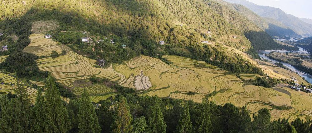 bhutan29.jpg