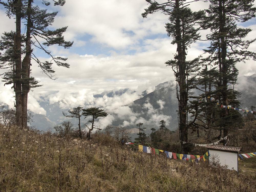 bhutan14.jpg