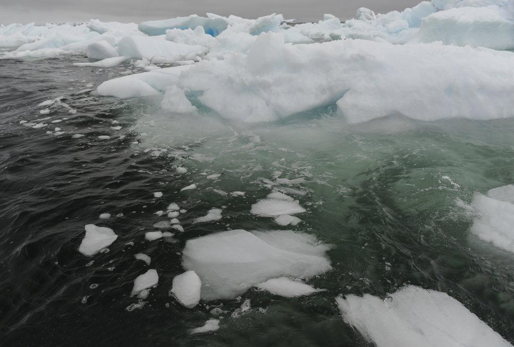 ice14.jpg
