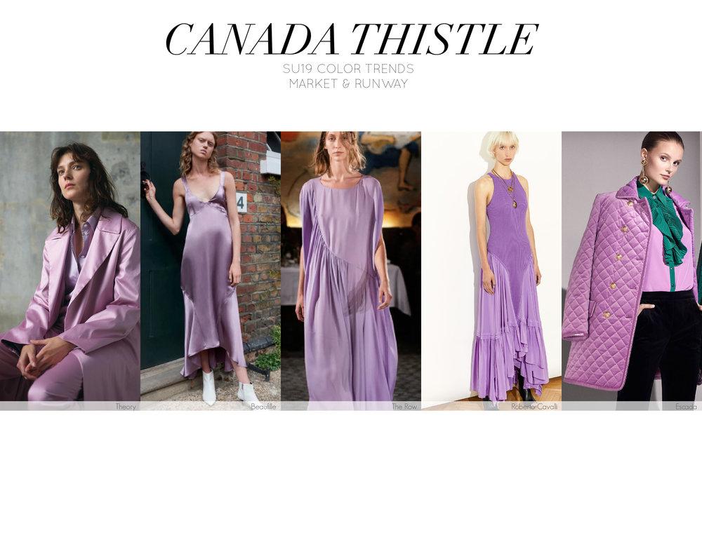 Canada+Thistle-01.jpg