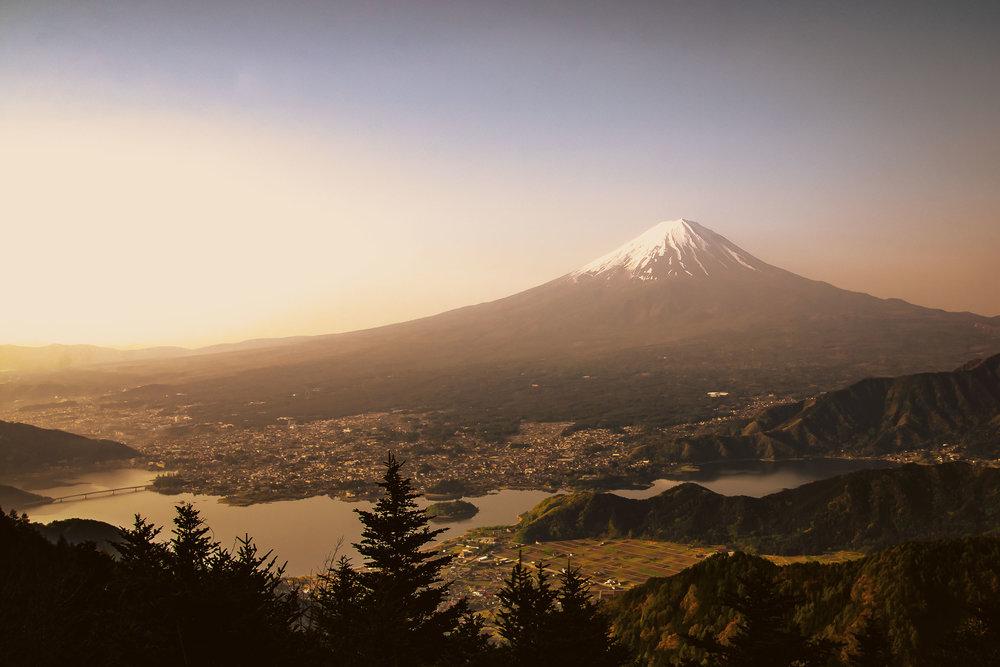 3a - Fuji (2016).jpg