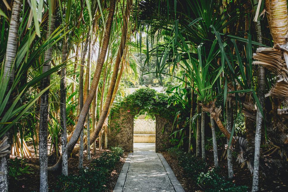 Villa-Botanica-Wedding-Photographer-Playback-Studios(32of760).jpg