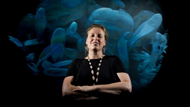 """Erica Seccombe uses X-rays to produces 3D images. Her aim is to show how science and art can be combined."" Photo: Jay Cronan, Canberra Times, FEBRUARY 20 2015"