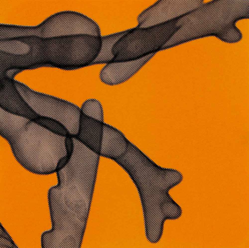 Erica Seccombe, Feelers (orange) 2007.