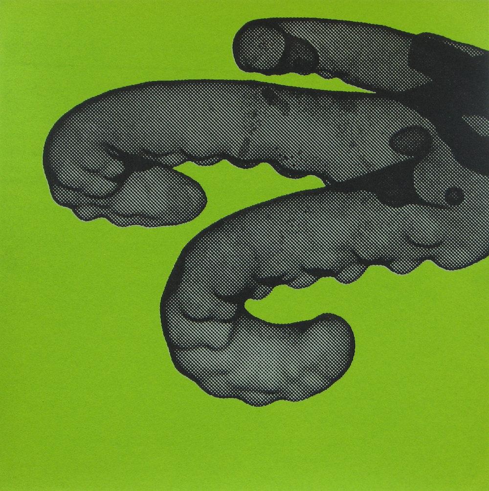 Erica Seccombe, Tentacles (green) 2007.