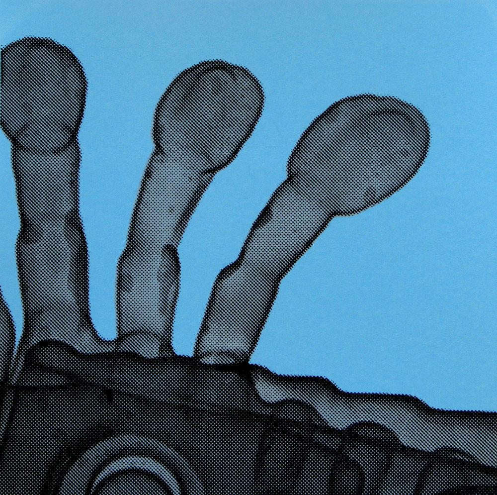 Erica Seccombe, Flippers (blue) 2007.