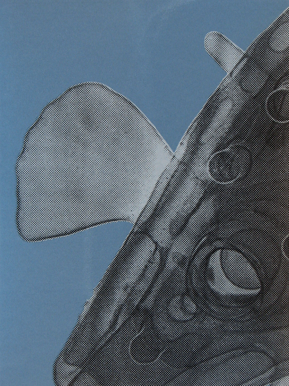 Copy of Erica Seccombe, Propeller, 2007,