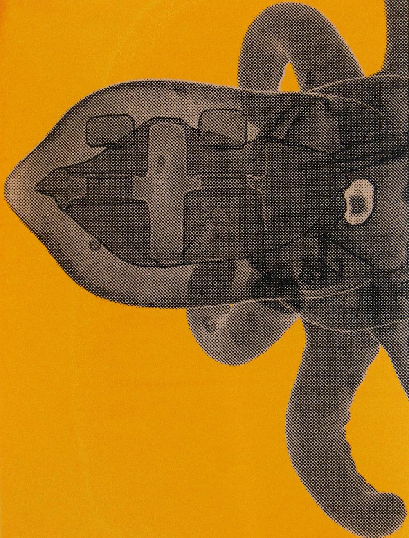 Erica Seccombe, Brain, 2007,