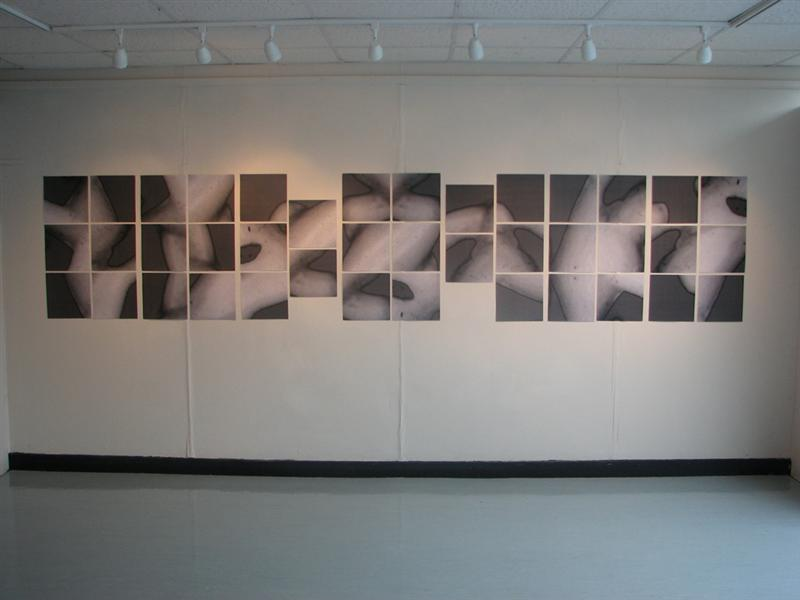 Erica Seccombe, Biomorph, 2006, photocopy on laser paper, 40 panels 30 x 30 cm)  installed:  Supernatural,   Alsager Art Centre, Manchester University, UK, 25 Sept - 27 Oct 2006