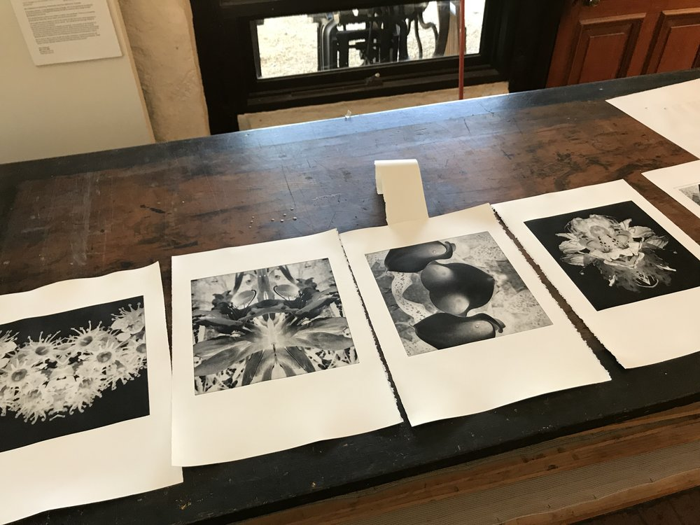 Erica Seccombe, Work in progress, proofed images at Baldessin Press + Studio 2018