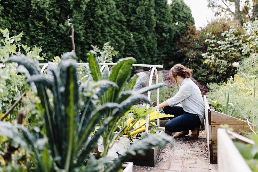 raincloudandsage-garden-3.jpg