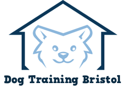 Dog Training Bristol