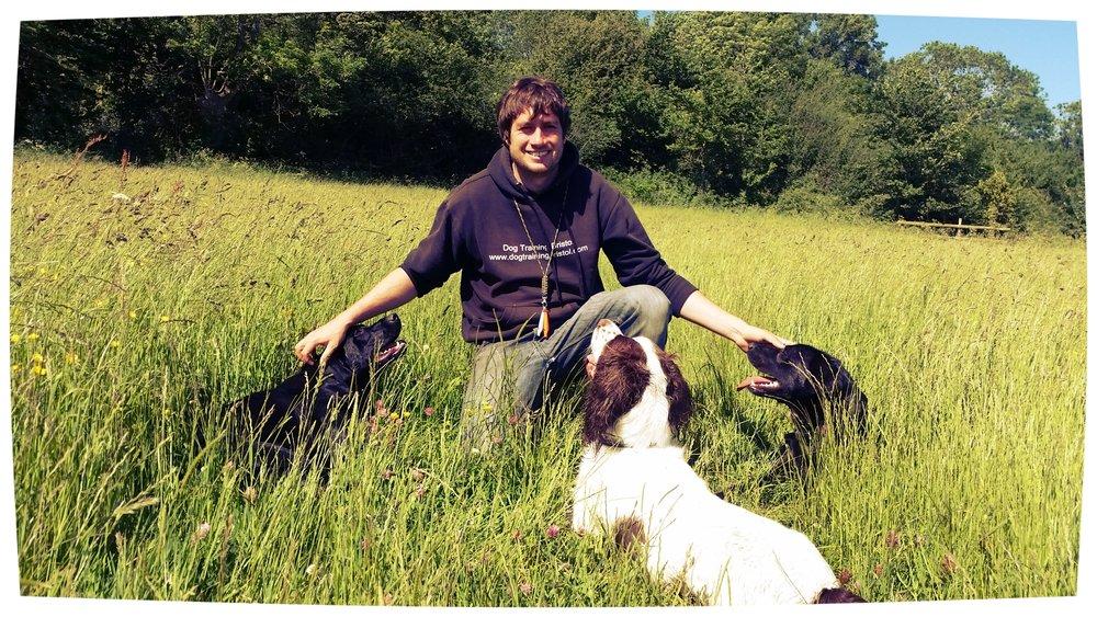 Dog+Training+Bristol-3.jpeg