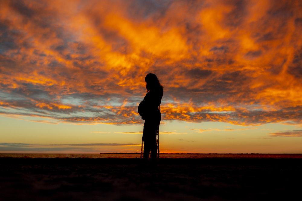 Southwest Florida Sunset Silhouette
