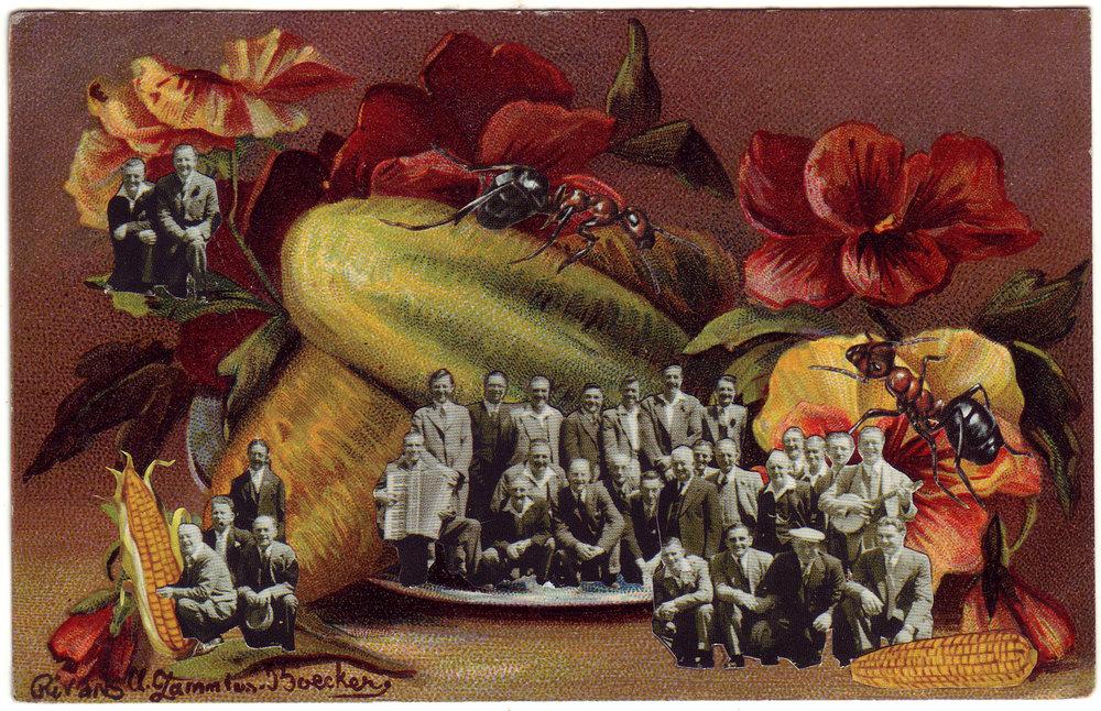 Giant Vegetable Society