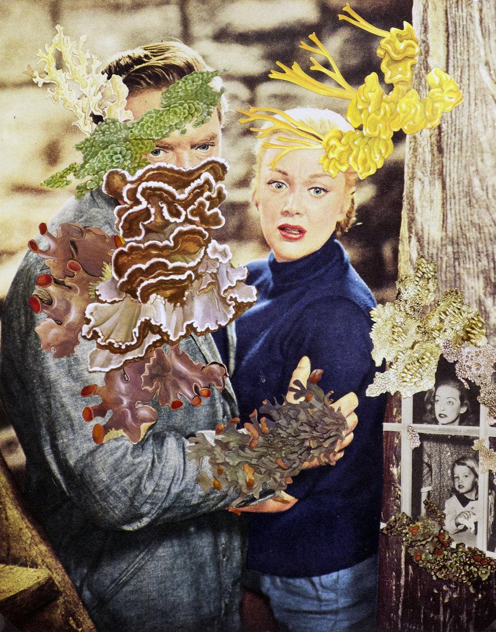 Bette Davis Lives in a Tree