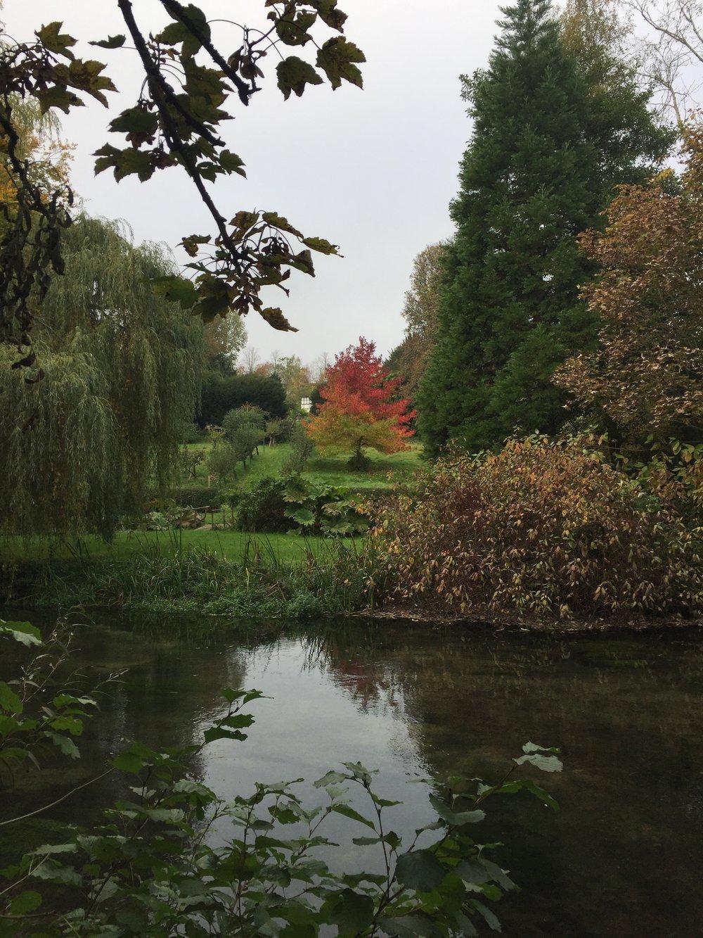 Beautiful Autumn walks