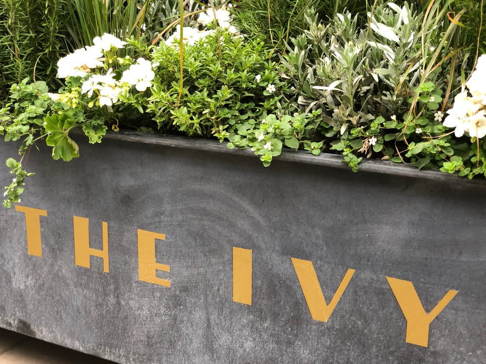 The Ivy Winchester Brasserie is open for business