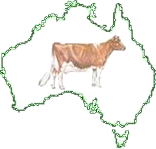 THE GUERNSEY CATTLE SOCIETY OF AUSTRALIA -