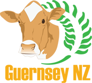 THE NEW ZEALAND GUERNSEY CATTLE BREEDERS ASSOCIATION -