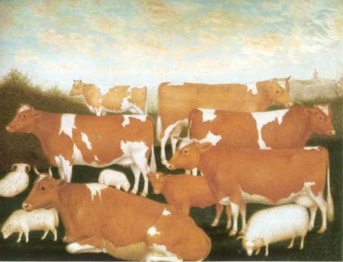 GUERNSEY CATTLE  Circa 1850