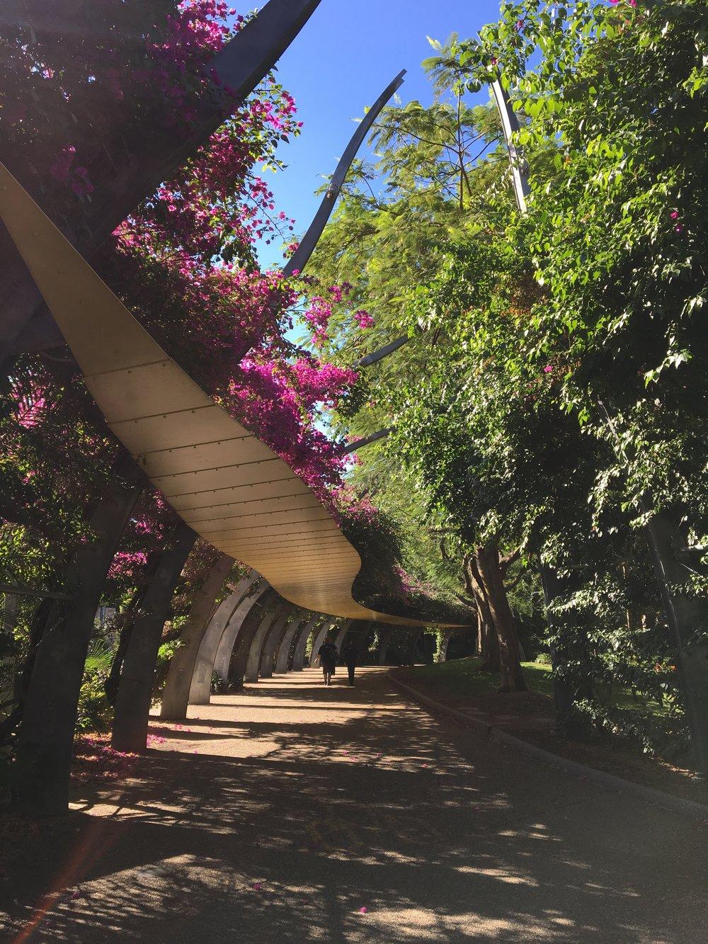 australia-brisbane-travel-southbank-arbour-walk-2.JPG