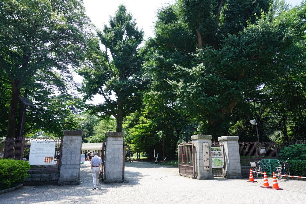 shinjukugyoen 2.JPG