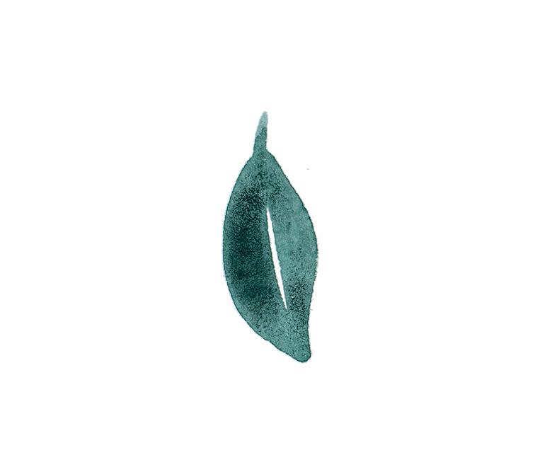 Foliage 5.png
