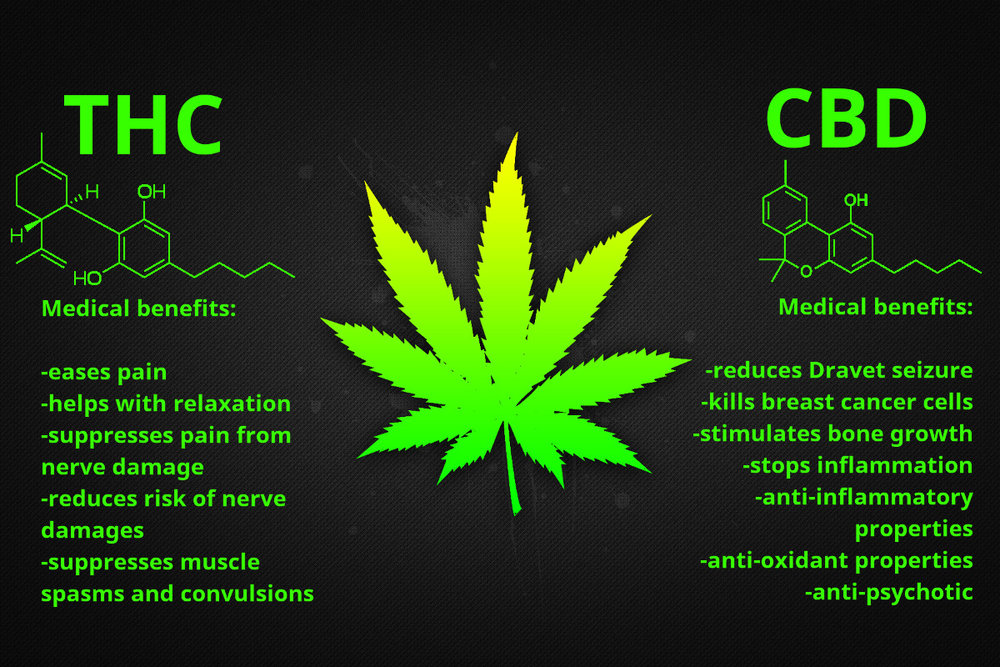 Image result for cbd thc