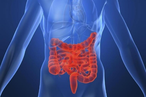 Crohns.jpg