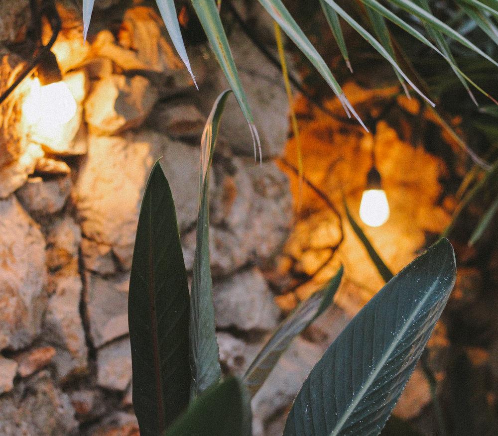 Petit Beach Hotel Casa Las Tortugas, Holbox Island, México