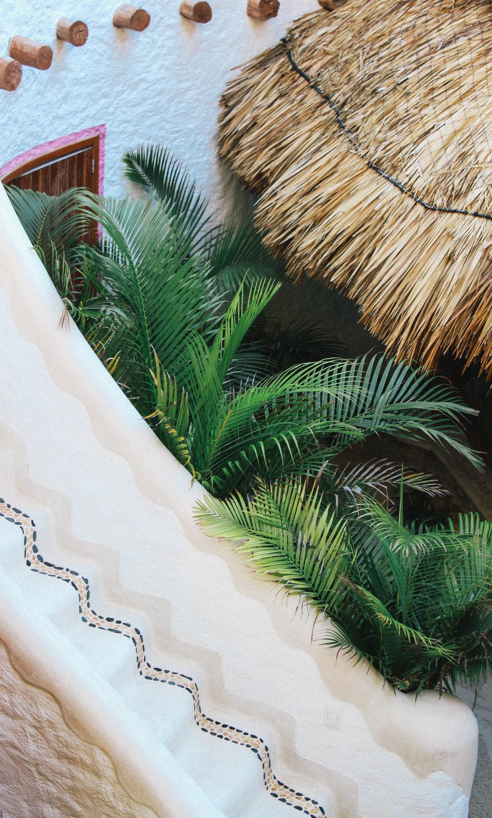 Hotel Holbox Casa Las Tortugas - Dic 2017-54.jpg