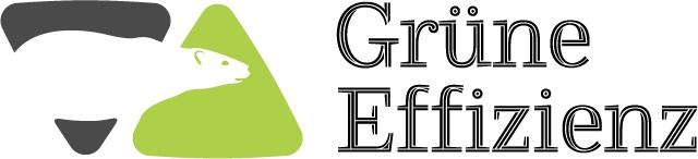Gruene-Effizienz-Logo-breit-small.jpg