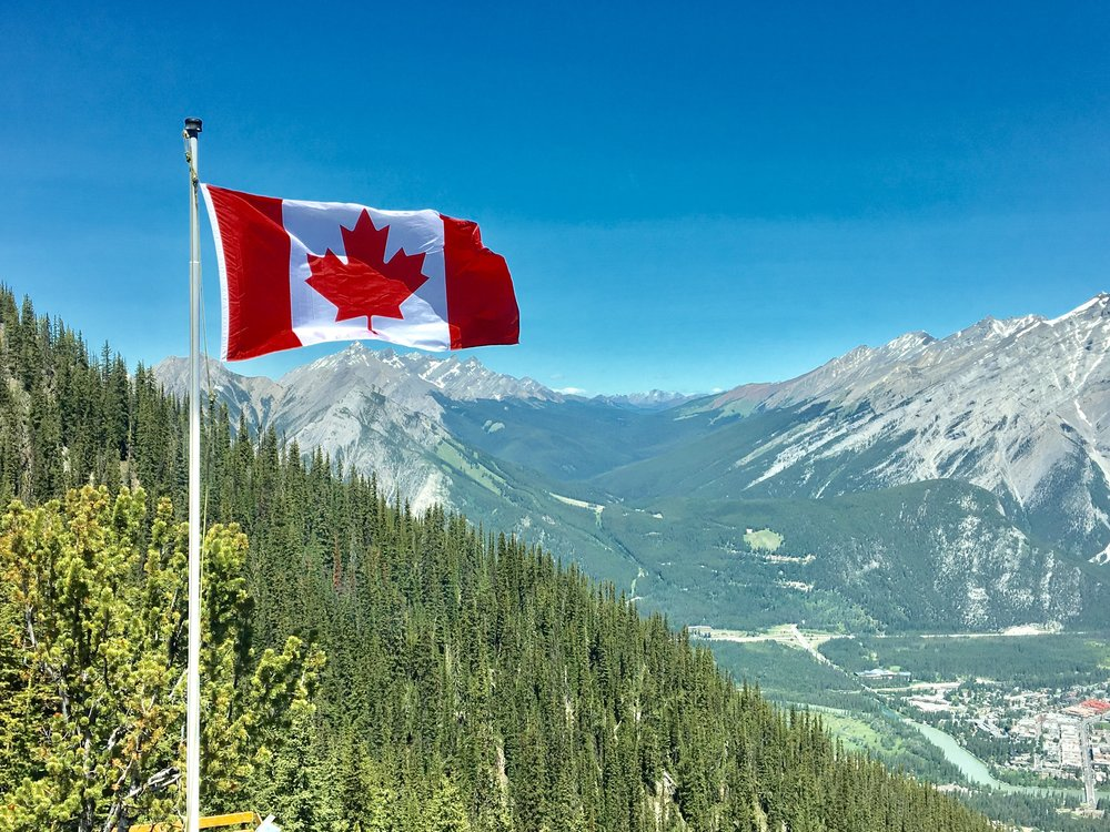 Canada's flag is graced with the Maple tree leaf. -