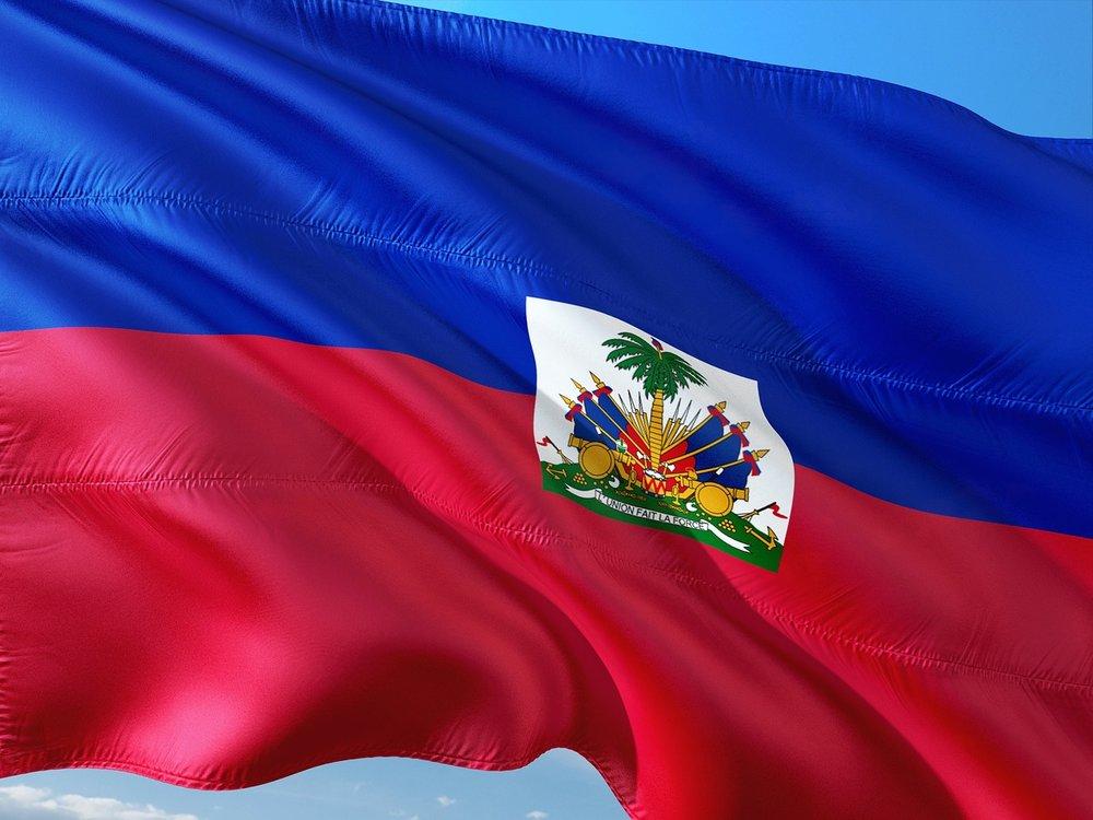 Haiti's flag grows a palm tree. -