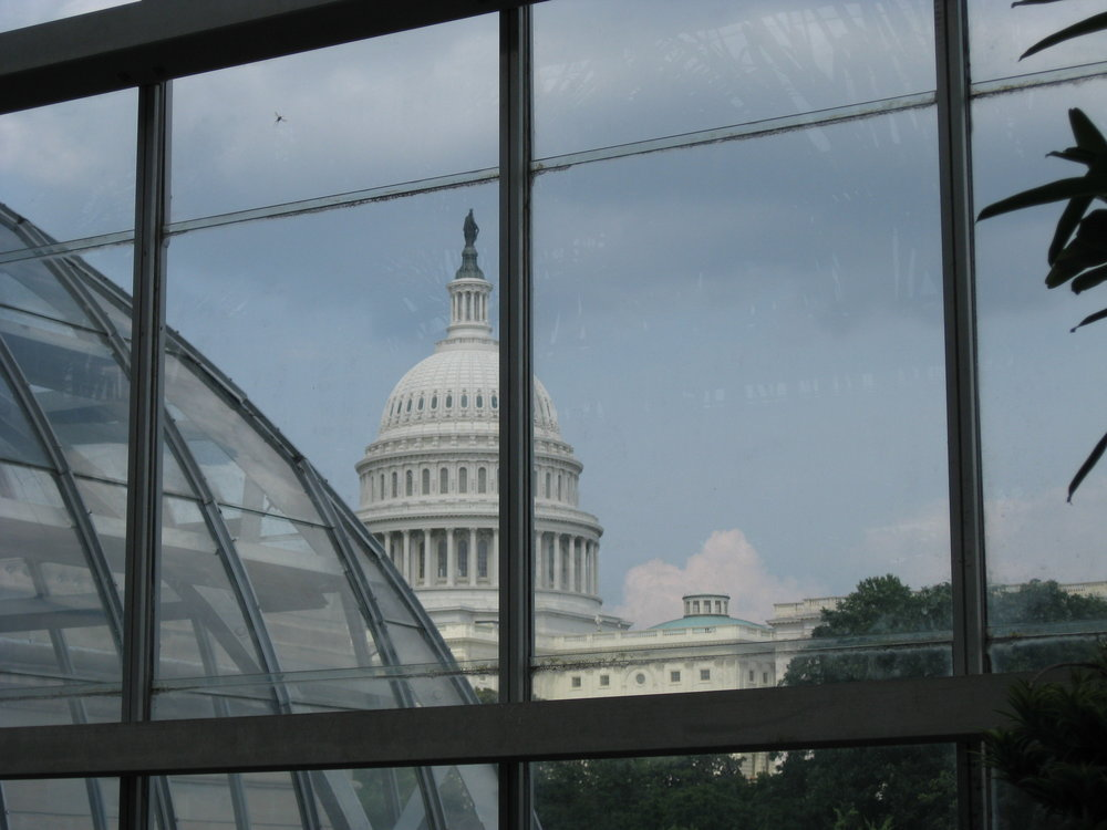 The United States Botanic Garden is on the Mall, right next to the Capital. The USBG aims to