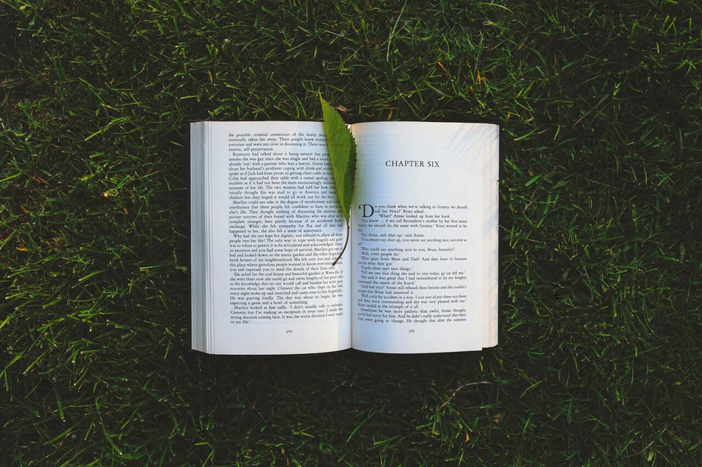 A book that is open, lying on grass