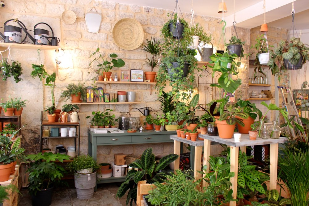jardin-welcome-bio-concept-store.JPG
