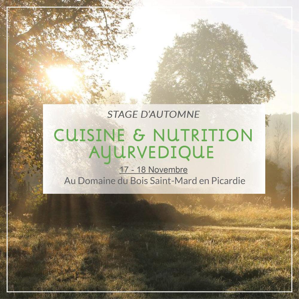 stage-cuisine-nutrition-ayurvedique-vegetarienne-vegan-picardie.jpg