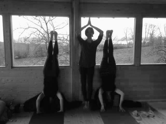 yoga-meditation-vinyasa-stage-cuisine-ayurvedique.jpg