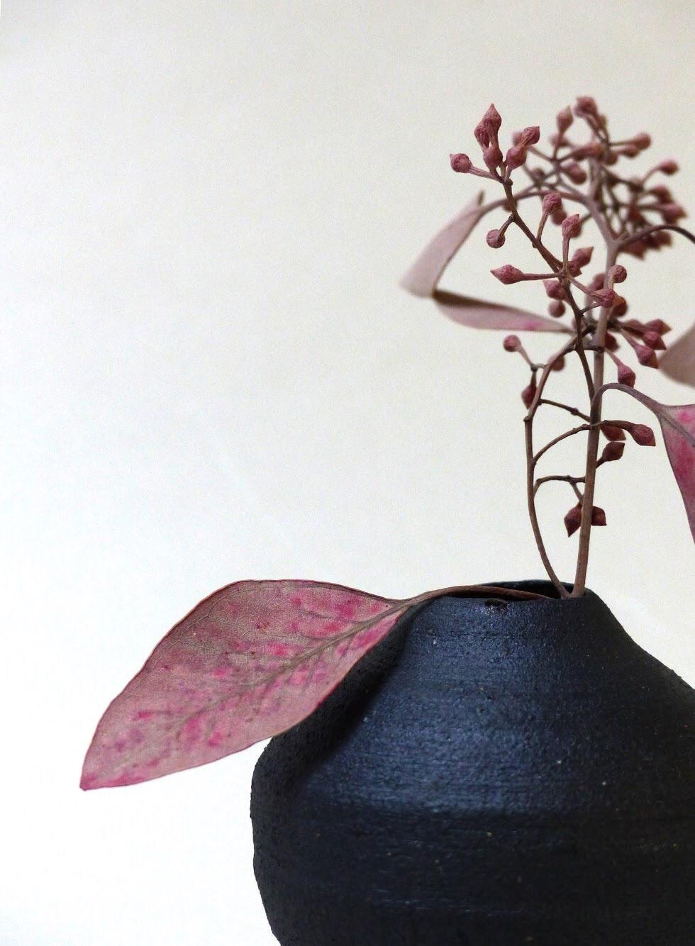 Violaine Toth Ceramics