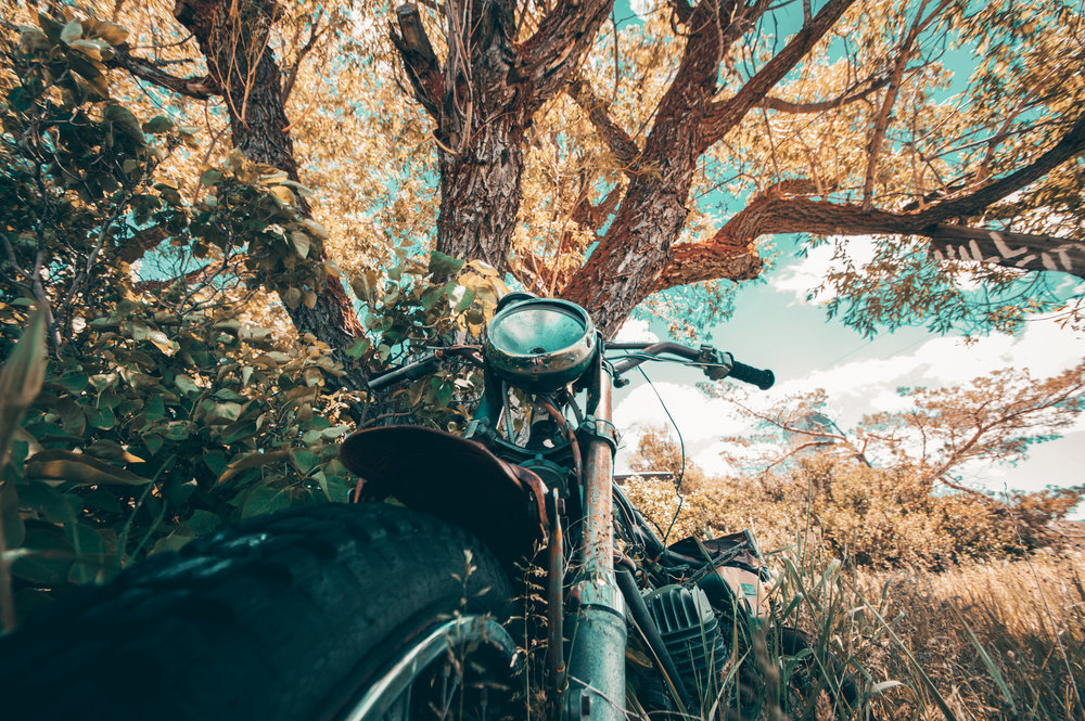 I was on a solo trip when I found this old abandoned motorcycle next to a tree behind an old barn in Hill City, Idaho. I fell in love with this photo because it breathes new life into an old and forgotten machine. Who knows how many miles were ridden, memories were made, or places were explored on this motorcycle. For a brief moment in this photo she's no longer dead.