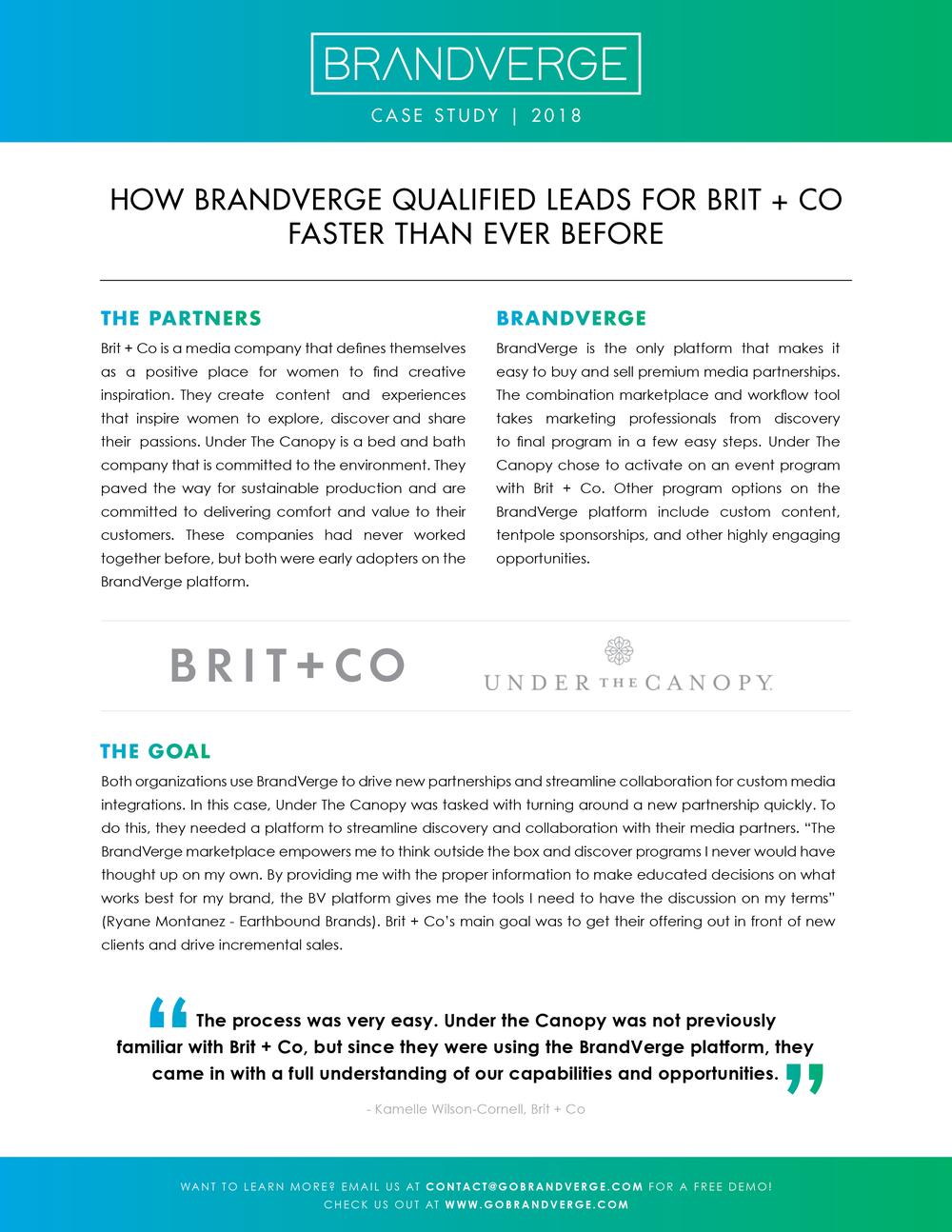 BrandVerge 2018 Case Study 1.png