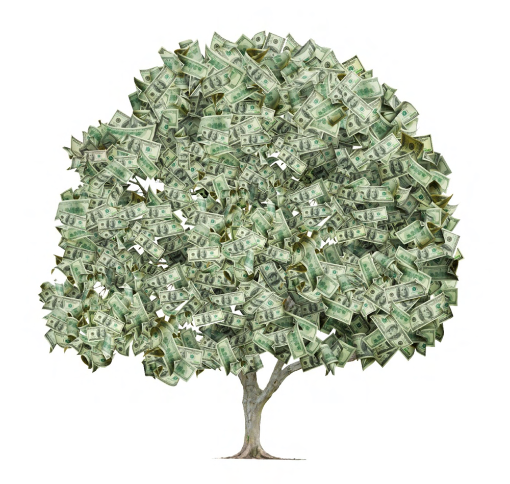 ABSURD HERO PRODS. - ...knows that money doesn't grow on trees. It would be rad if it did. Ironically, it can only be made by killing trees, so we have adopted a
