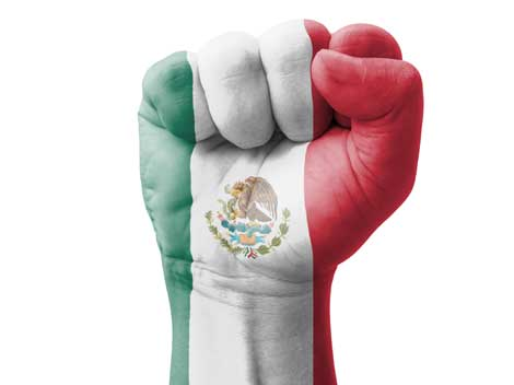 The above image has become very powerful symbol for Mexicans. It is not only a symbol of strength, but also the hand gesture used by rescuers and brigadiers to silence volunteers around collapsed structures to help listen for signs of life. It is a symbol of both expectation and hope, and has helped build a rhetoric of collaboration and community in recent times. Thank you for being a part of it! - Mariel Andrade. Psychologist, Mexico City