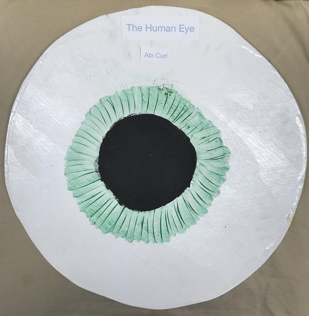 Eye 2.jpg